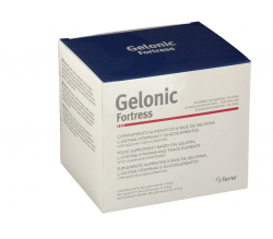 Gelonic Fortress 20 Unds