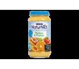 nestle g. postre 6 frutas 250 gr